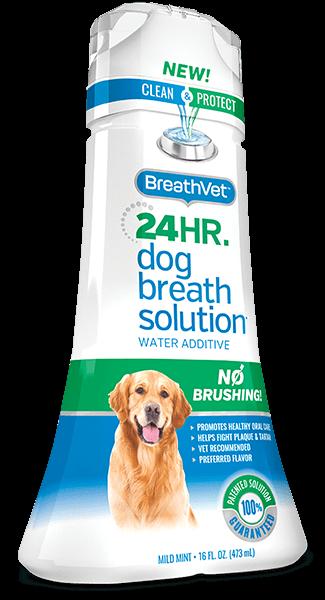 BreathVet Single Bottle